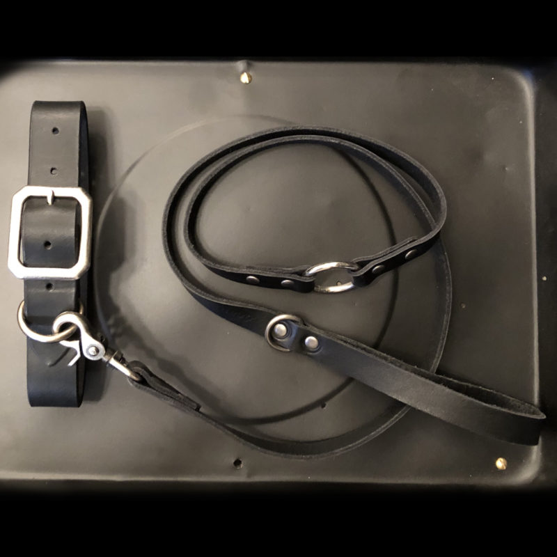 AIRMKT eCom PN XXXXXX Dean Accessories _collar leash black WEB