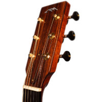 AIRMKT eCom PN XXXXXX Rocky Mountain Guitars Antero 18 of 29 WEB