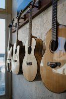 Rocky Mountain Guitar-13