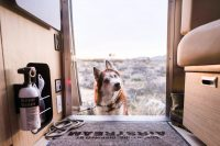 ZOOMZOOMCREATIVE_AIRSTREAM_ROUNDTRIP_JOSHUATREE-52