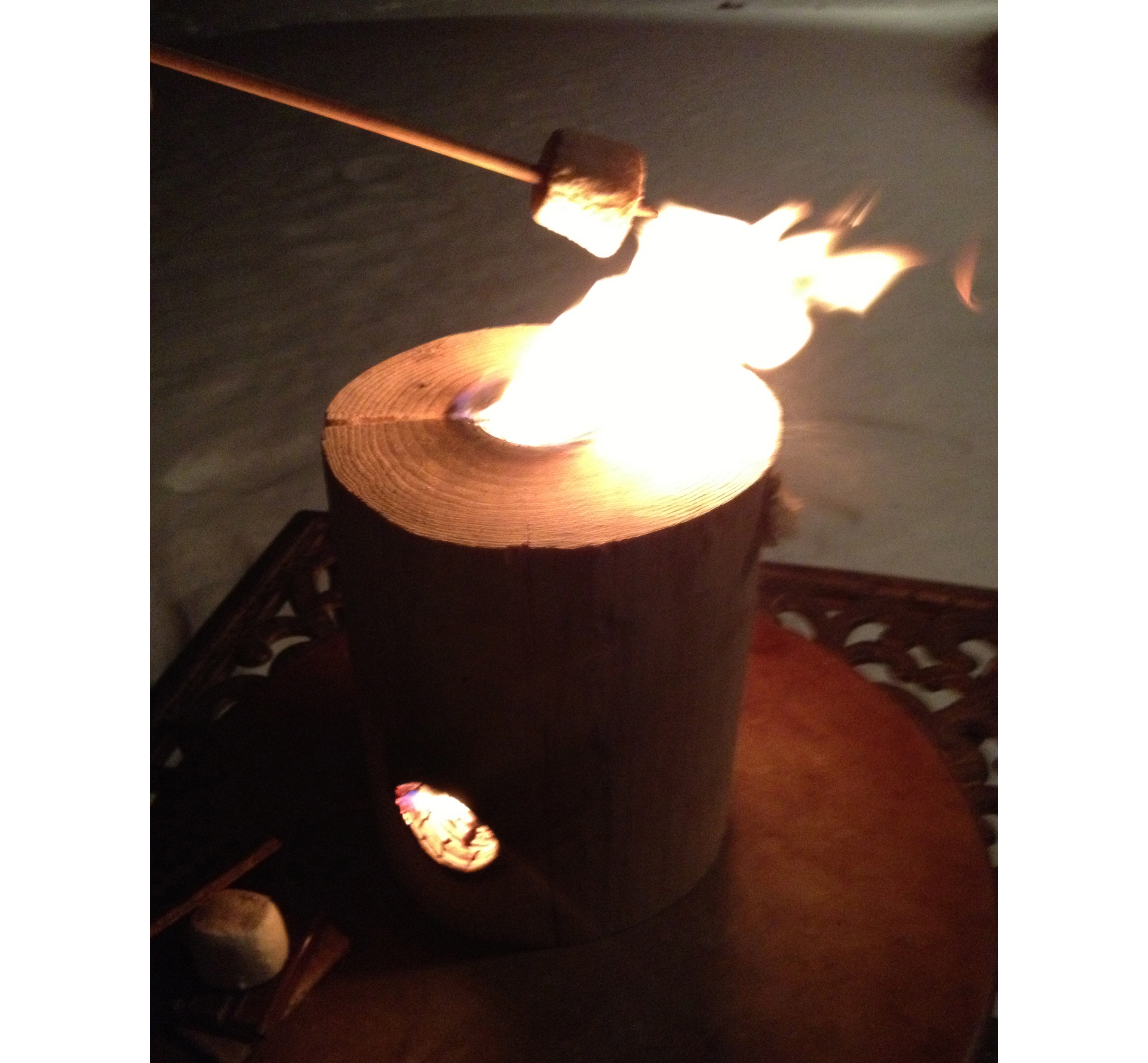 ONE LOG FIRE STICKS IN ACTION