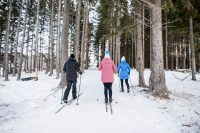 LUVLENS_COMMERCIAL_AIRSTREAM_BASECAMP_NORDICSKI-57
