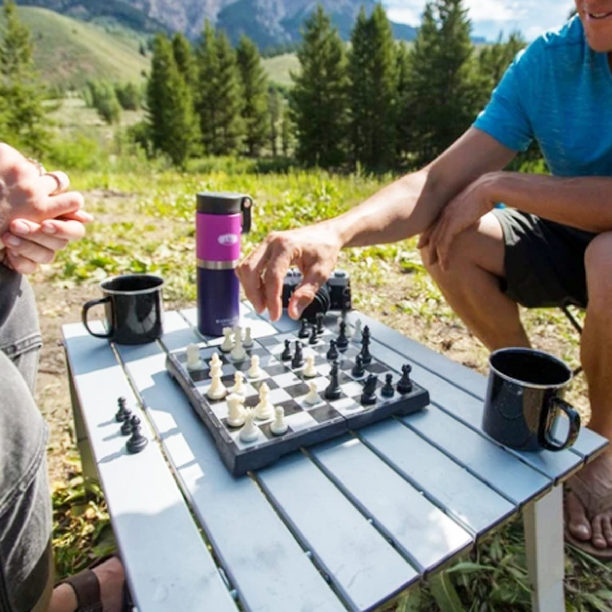 GSI Outside Inside magnetic chess checkers in play
