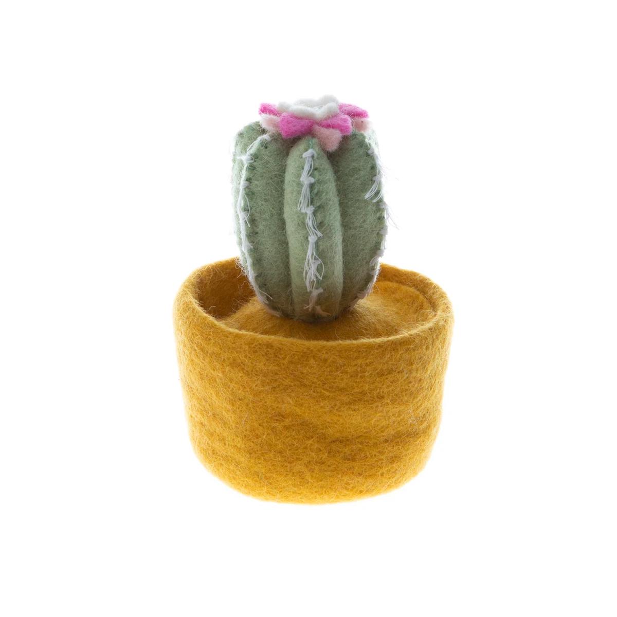global goods partners cactus yellow pot