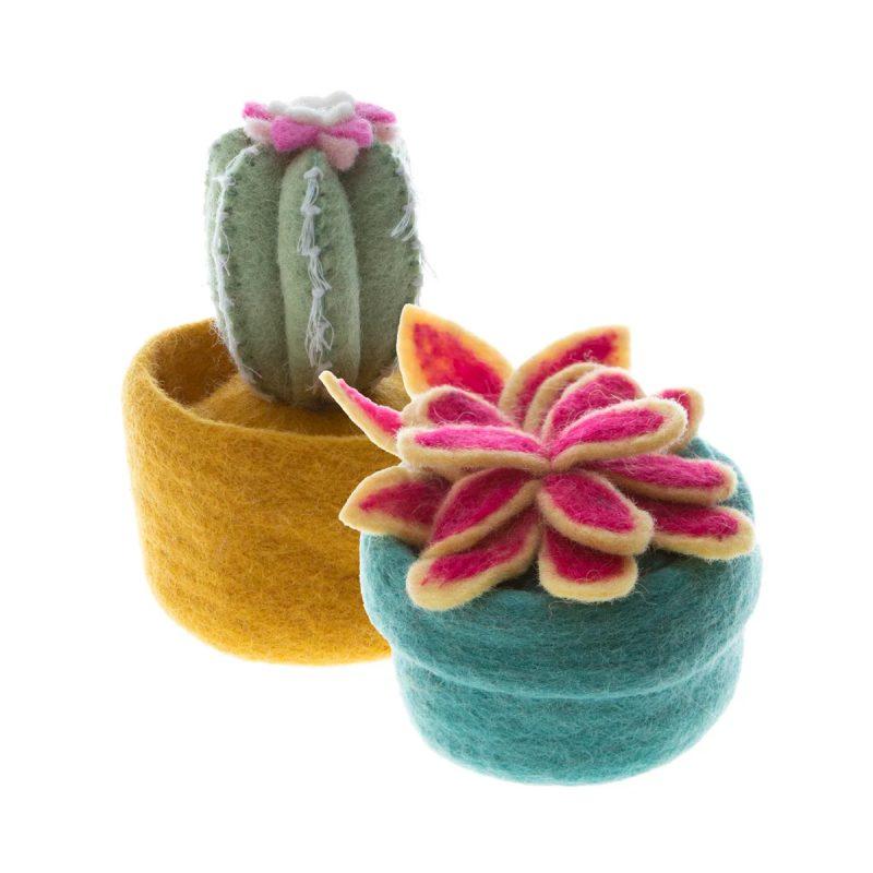 global goods partners cactus pots 2 colors