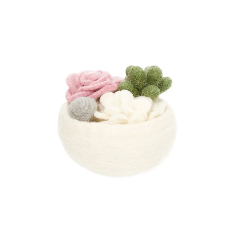 global goods partners succulent bowl pink rose