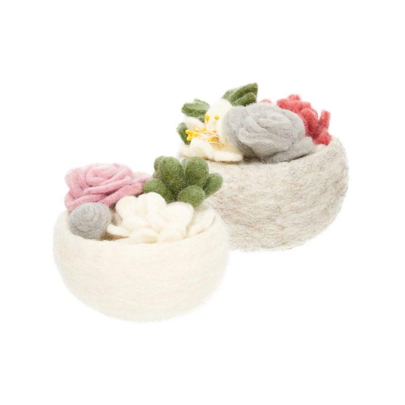 global goods partners succulent bowls 2 colors