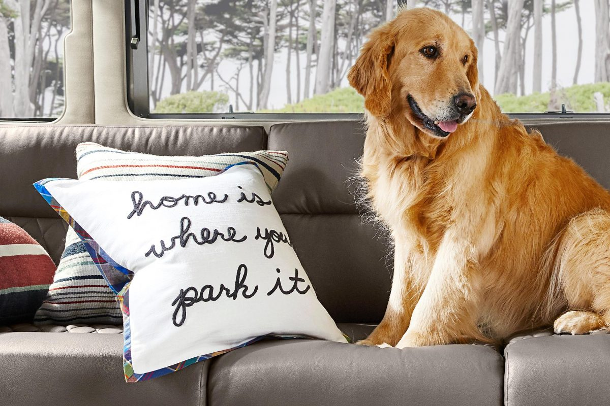 Airstream + Pottery Barn Home Is Where You Park It Pillow Dog