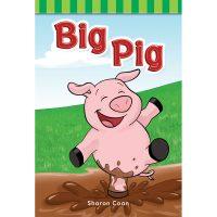 TCM-Big-Pig
